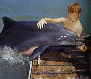 Pictured: Flipper - Where do I find this Dolphin?